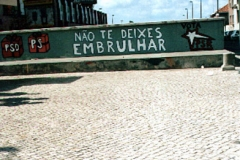 mural_amoreiras_legisl_95